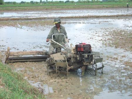 Mỗi loại đất cần một lượng và loại phân bón khác nhau.